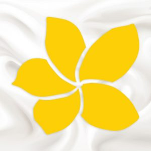 Giới thiệu Sun Group Sầm Sơn