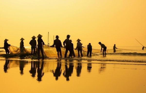Hãy ghé thăm làng chài tại Sầm Sơn để mua được hải sản tươi ngon